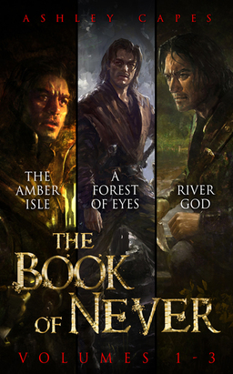 Book of Never